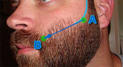 ligne de barbe